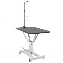 vidaXL Cargador solar plegable 100 W 12 V