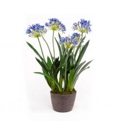vidaXL Puerta de malla de jardín acero galvanizado gris 100x125 cm
