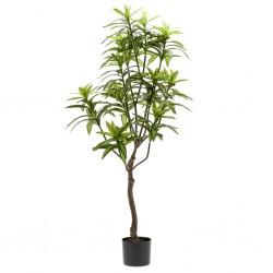 Bomba de agua para el motor, modelos Renault, Opel, Nissan