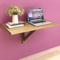Set decorativo de lienzos para la pared modelo leones, 100 x 50 cm